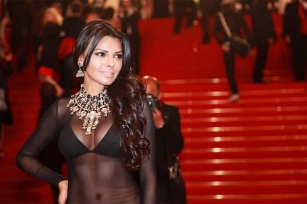 Sherlyn Chopra wearing a transparent dress at the Red Carpet