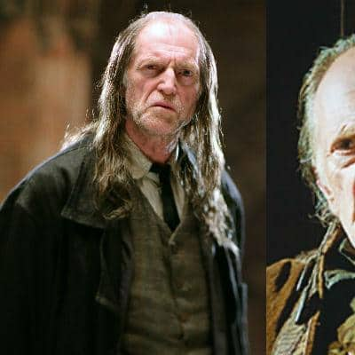 10 Actors Who Starred in Both 'Game of Thrones' & 'Harry Potter