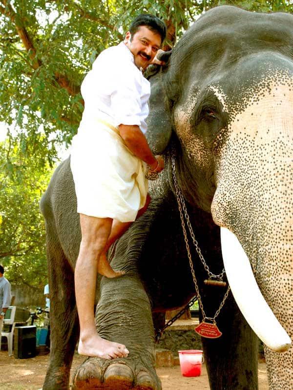 हाथी का दांत बना फिल्म स्टार जयराम के लिए परेशानी का सबब