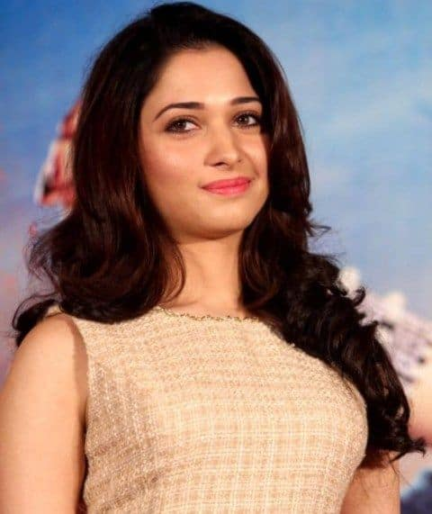 Tamil Remake of Queen Shelved