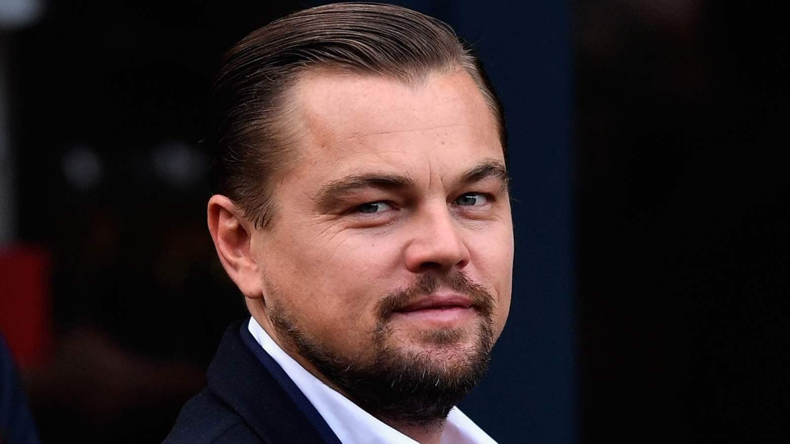 Leonardo Dicaprio Wants To Portray Stan Lee In Biopic
