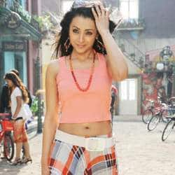 Trisha plays a bold girl in Pandian's next