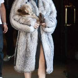 Lady Gaga says sorry to fans for wearing fur
