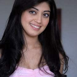Pranitha Subhash wishes Attarintiki Daaredi to be a hit