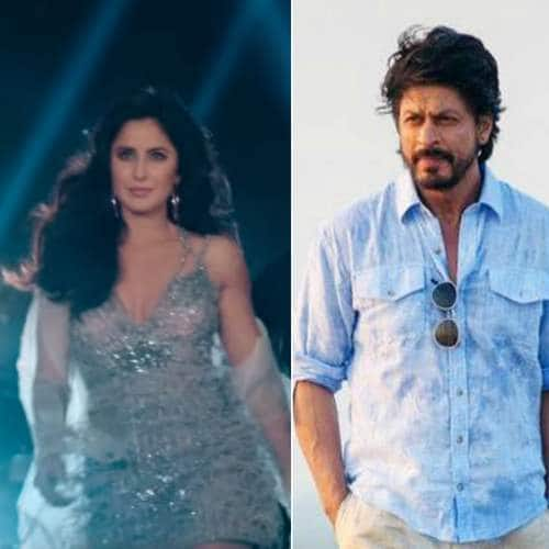 Not Just MC Sher, These Characters From Recent Bollywood Films Also Deserve A Spin-Off Of Their Own