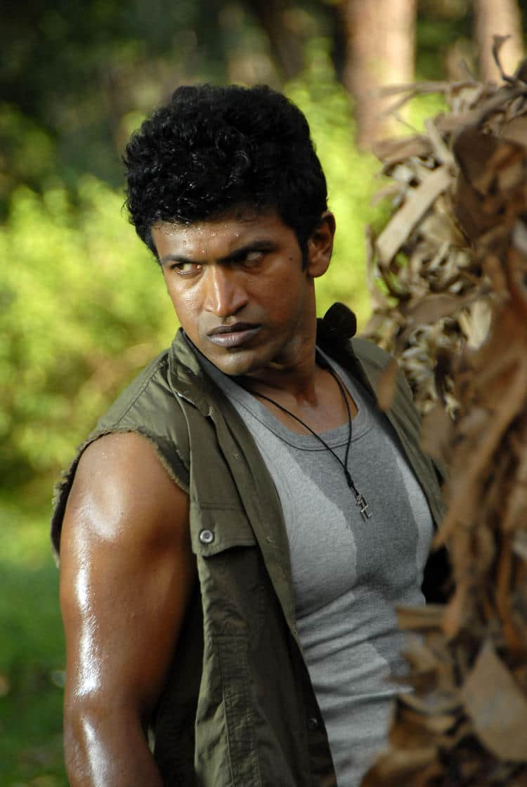 Puneeth Rajkumar To Team Up With Gautham Menon For His Next