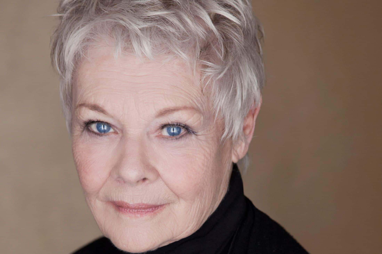 Please Don't Call Me A National Treasure...I Hate It!: Judi Dench