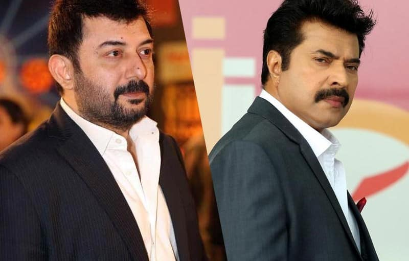 Arvind Swami And Mammootty To Share Screen Space Again?