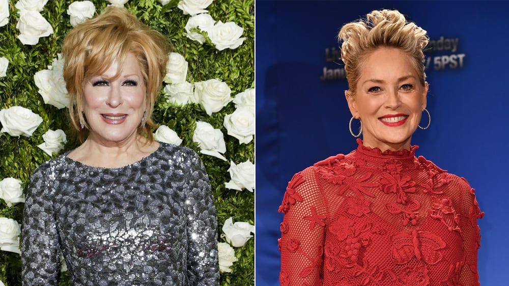 Sharon Stone, Bette Midler to Feature in The Tale of the Allergist's Wife Movie