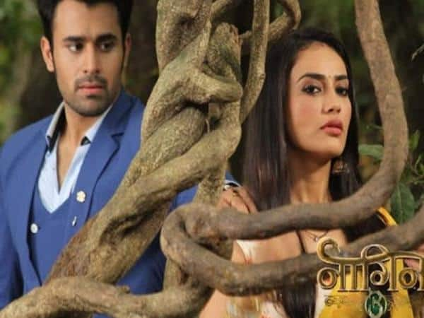 Naagin 4: Surbhi Jyoti And Pearl V. Puri To Make An Entry Into The Season Finale?