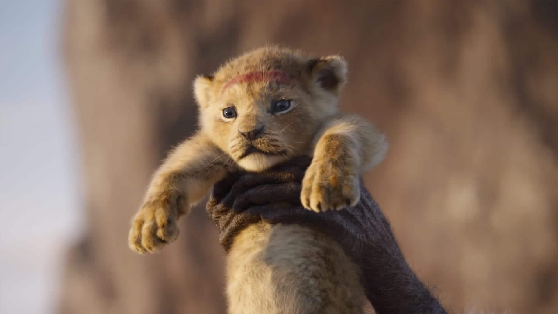 'द लायन किंग' रिव्यू: सांस थाम लेने वाले खूबसूरत विज़ुअल्स से भरी इस फिल्म में इमोशन थोडा कम है !