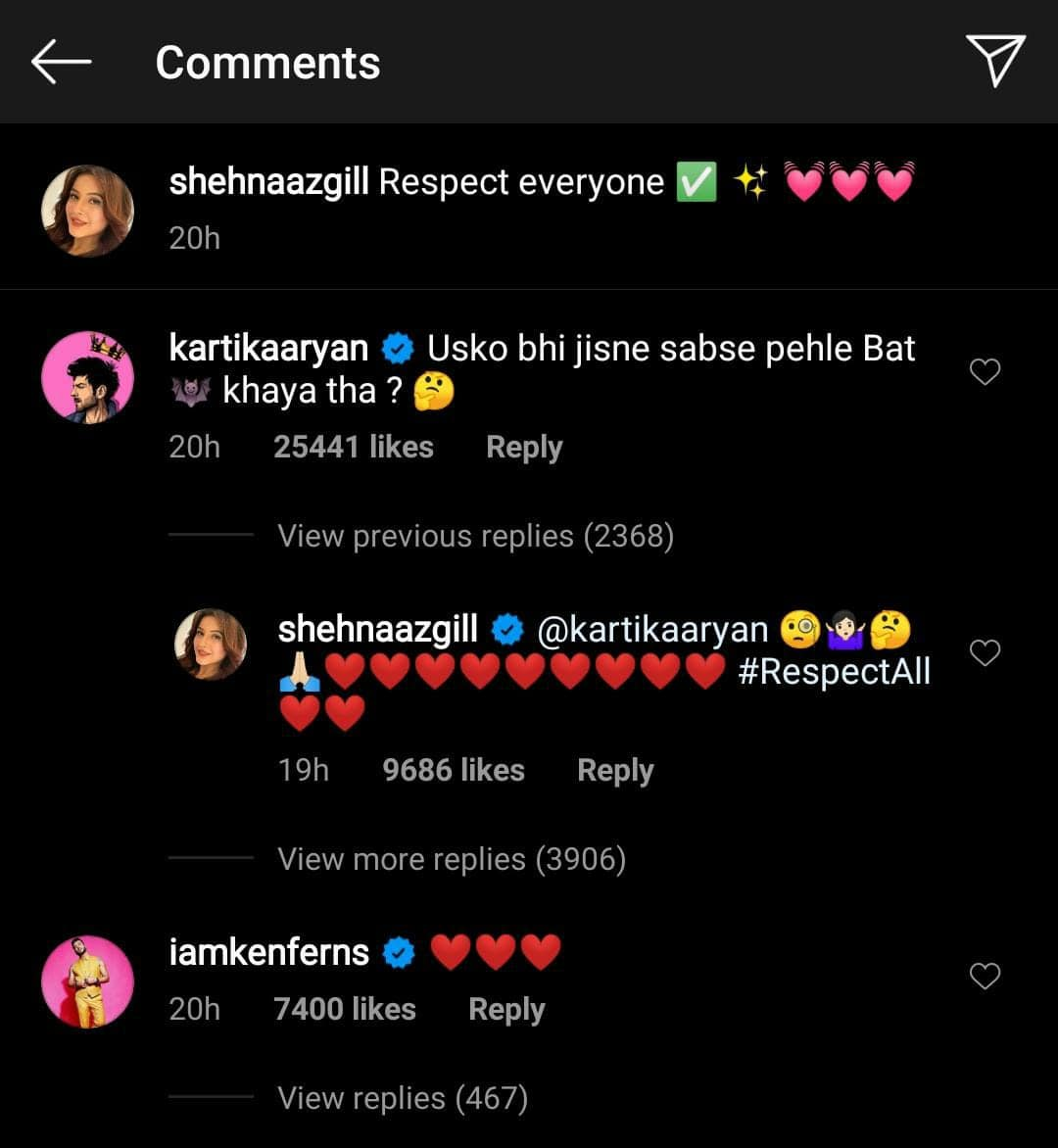 Kartik Aaryan Leaves Shehnaaz Gill Confused With His Hilarious Comment On Her Latest Post