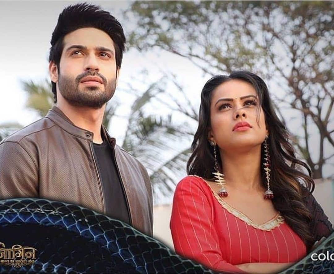 Nia, Rashami And Vijayendra's Naagin 4 Is Coming To An End As It Could Not Meet Expectations; Deets Inside