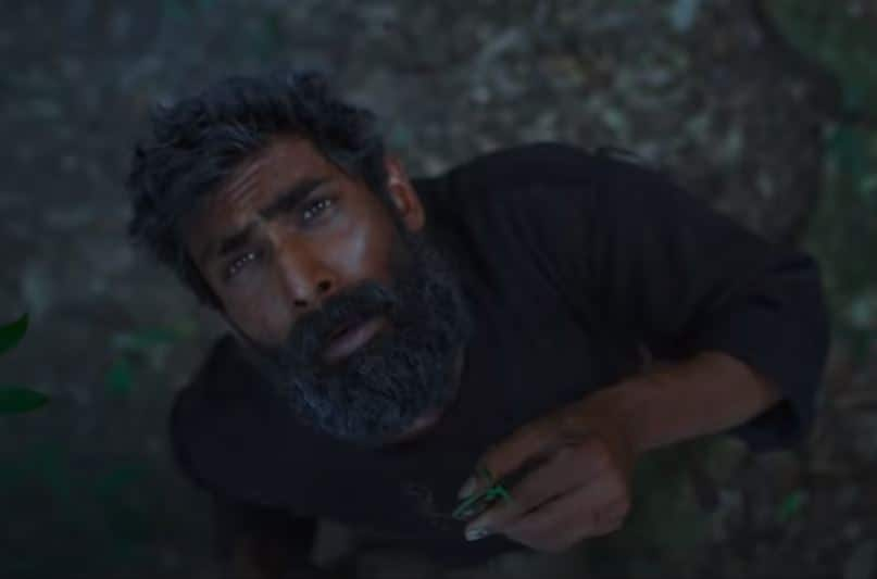 Haathi Mere Saathi Trailer: Rana Daggubati Clashes Against The System To Protect The Haathis In This Film About Man Vs Nature Conflict