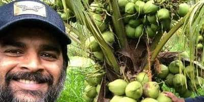 R Madhavan Converts A Barren Land Into Farm, Says 'Every Bit Of Learning Has Been Priceless And So Worth It'