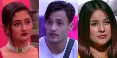 Bigg Boss 13 Preview: Rashami, Asim Questioned About Their Love Life; Shehnaaz Walks Out Of The Press Conference