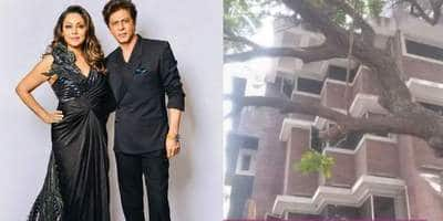 Shah Rukh Khan's Mumbai Office Remains Unused For COVID Facilities For Over A Month Now