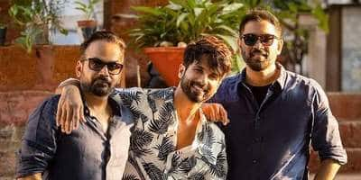Shahid Kapoor's character in Raj & DK's Sunny will be a treat for fans; Deets inside
