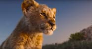 The Lion King still shot(Simba)