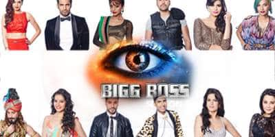 How Well Do You Know These Bigg Boss Contestants!