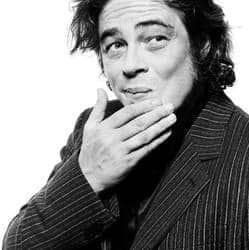 Benicio del Toro's entry enriches Guardians of the Galaxy cast